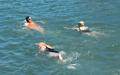 iris and morley, swimming in the bay (glasser) Tags: bay dolphinclub ida morley swimming