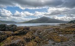 Loch Alsh (bervaz) Tags: scotland escocia nubes carlzeiss clouds variotessart agua lago mountain montaas lake algas a7rm2 variotessartfe1635mmf4zaoss