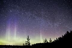 0954 (P. Koskela) Tags: sky night forest finland stars landscape astrophotography comet maisema northernlights auroraborealis milkyway ruovesi revontulet panstarrs siikaneva linnunrata