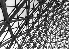 Mitchell Park Domes - Milwaukee, WI-12 (carolyndrohner) Tags: blackandwhite bw monochrome blackwhite milwaukee moire geodesic wi mitchellparkdomes geodesicdomes blackwhitemonochrome