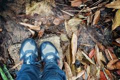 Tenis & Life (Daniela Herreras) Tags: santa blue ro hojas agua shoes tennis oaxaca riachuelo catarina tuxtepec