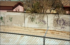 (K. Sawyer Photography) Tags: wall fence graffiti leaf 420 pop goof marijuana slander insult diss albuquerquenewmexico blazeit albuquerquepolicedepartment