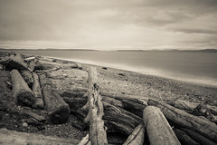Agate Beach (Carrie Cole Photography) Tags: ocean longexposure sea canada nature water bc britishcolumbia scenic victoria vancouverisland driftwood 1855mm westcoast ndfilter hoyand400 sonynex7 carriecole