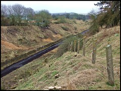 The Borders Railway - Tynehead. (Kingfisher 24) Tags: trees scotland cutting fenceposts midlothian tynehead waverleyroute bordersrailway
