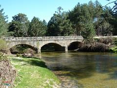 Puente del Paso de los Arrieros (Historia de Covaleda) Tags: espaa spain fiesta paisaje douro pinos soria historia pinar tradicion duero covaleda
