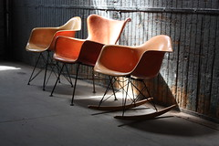 Exhilarating Early Eames Salmon RAR Rocker for Herman Miller (U.S.A., 1950's) (Kinzco) Tags: winter summer baby fall vintage spring toddler infant midwest modernism craigslist retro lakemichigan rocker newborn redlabel cranbrook georgenelson hermanmiller interiordesign lakefront seafoamgreen zinc zenith rar midcenturymodern luminaire danishmodern venicecalifornia harrybertoia charlesrayeames jensrisom midmod zeelandmichigan elephantgrey kennyk lawrencepeabody k2modern chicagomidcenturymodern birchrunners iconicrocker
