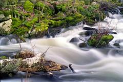 Water Coming Out Of The Rocks (waaaaste) Tags: waterfalls greenbeautyforlife