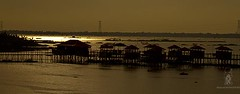 C_5D_69969 (HamimCHOWDHURY  [Active 01 Feb 2016 ]) Tags: bw canon landscape eos oct dhaka dslr bangladesh 2012 hoya ashulia akhaura hddc framebangladesh kashphoollandscape mirpurberibandh asuliya gitzo3541ltripod novoflexnqballhead