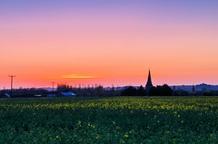 Sevington view (Jez22) Tags: uk blue trees sunset england sky copyright plant color building green english church colors field parish yellow skyline rural dark landscape outdoors evening countryside early kent twilight glow colours exterior village view dusk farm country scenic nobody landmark scene rape steeple pole spire crop environment southeast agriculture vane telegraph tranquil sillhouette hamlet rapeseed oilseed jeremysage