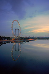 Singapore Flyer At Dawn (teckhengwang) Tags: flower gardens by landscape bay flyer singapore sony full dome frame 20mm wang alpha dslr teck heng sal20f28 teckhengwang