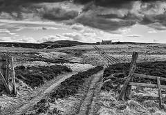 Dava Moor and Ruin (Geoff France) Tags: fence landscape highlands track path cairngorm speyside grantownonspey dava scottishhighlands cairngormnationalpark geofffrance