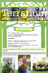 Terrarium Workshop - SufficientlySuffonsified in Haliburton Ontario (Wall Flower Studio) Tags: ontario canada june gardening indoor class workshop terrarium haliburton containergardening indoorgarden glassgarden karensloan wallflowerstudio sufficientlysuffonsified