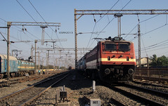 BRC WAP 4 #22918 enters BSR with 12995 Bandra - Ajmer/Udaipur Express. At the same time VTA WDG 3A #13324 'Shakti' enters with 2 hours late 09419 Mangalore- Ahmedabad Special.. Also a ED WAG 7 with BCNHL watches them.. Vasai Road, 5 April 2013 (ShreyasRK) Tags: 2 ed with watches time 4 7 3a special same brc wap wag bsr late hours express them ahmedabad shakti vta bandra mangalore wdg enters 12995 13324 22918 at also ajmerudaipur bcnhl 09419