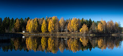 Colors of autumn.... (Pewald) Tags: