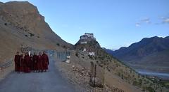 SPI_222 (soggy_3_16) Tags: spiti himalayas landscape nikon d90 monk key monastery