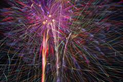 FIREWORKS No.4 (ajpscs) Tags: ajpscs japan nippon  japanese  tokyo  nikond750 edogawa  ichikawa  koiwa  edogawahanabitaikai     night viewtokyoyakei  fireworks festival summer nightshot nightphotography natsu   artoffireworks tokyosummerfireworksfestival fireworksfestival  hanabitaikai 2016 fireworksofsummer lightfantasy summerfireworks 41 the41thedogawafireworksfestival 32 sparklersinthesky fireworksno4