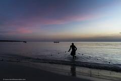 Exodus (www.davidbaxendale.com) Tags: fisherman sunset nets jamaica negril magic hour sea fish fishing pink sky