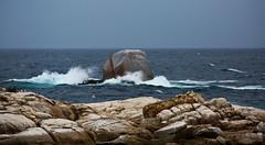 oceanic monolithic (keith midson) Tags: bicheno tasmania eastcoast rock ocean water waves sea stormy coast coastline coastal