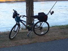 Fishing Bike 2016 (wildukuleleman) Tags: fishing bike bicycle 2016 cape cod canal massachusetts