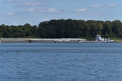 MV Elizabeth R. Chase-Ingram Barge Co._2512 (Porch Dog) Tags: 2016 garywhittington nikond750 fx nikon200500mm september summer towboats riverboats barges ohioriver footofbroadway paducahkentucky water river