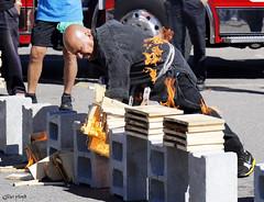 Karate chopping flaming planks of wood. (Gillian Floyd Photography) Tags: karate chop flaming planks wood fire break