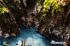087 See in der Schlucht (Frank Heim) Tags: blue macro tree green ice water look see frozen rocks wasser down canyon grn blau makro eis unten baum blick downwards nach schlucht felsen pftze gefroren