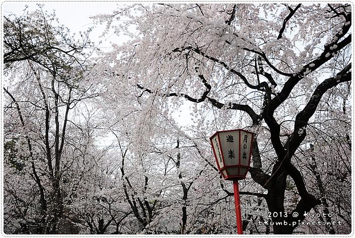 平野神社 (4).jpg