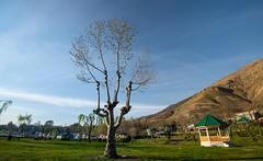 Manasbal Lake, Srinagar, Kashmir (Debojit Deb) Tags: landscape kashmir naturephotography landscapephotography wideange nikond600 indiannature nikonwideangle debojitdeb nikon1635mmf4vr