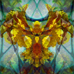 The Phoenix in the Flower (hollykl) Tags: flower yellow photomanipulation square spring digitalart bloom hypothetical vividimagination arteffects sharingart awardtree netartii