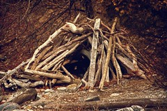 scaryden (Faugn) Tags: wood driftwood shelter lemoinespoint lemoinespointconservationarea