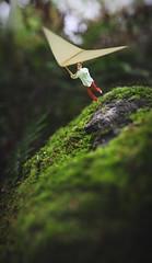 sail (fiddleoak) Tags: finland moss sail finnish hanglider greenspring