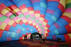 Balloons Over Waikato 2013 (Jaime Carter) Tags: morning pink blue red newzealand lake green yellow rainbow basket purple sunday balloon hamilton waikato inside balloonsoverwaikato lakerotorua 2013 jaimewalsh innescommon jaimecarter balloonsoverwaikato2013 coldinflated