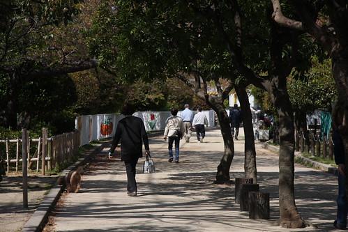 新緑の散歩