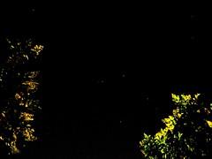 Constelacin del Cuervo y vecinos (jerodamor@yahoo.com.mx) Tags: astronoma astrometrydotnet:status=solved astrometrydotnet:id=nova1254990