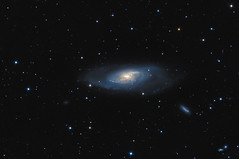M106 and friends - 11/14 Apr 13 (Steve's Astrophotography) Tags: spiral ngc galaxy canes 4248 4232 m106 venatici Astrometrydotnet:status=solved ngc4231 at8rc Astrometrydotnet:version=14400 metaguide Astrometrydotnet:id=alpha20130449231305