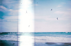 Just think of the future (Rob Aparicio) Tags: old blue sea sky film beach analog mar spring andaluca spain waves gulls horizon playa olympus shore cielo olas gaviotas horizonte orilla espuma analgico olympusom20 robaparicio robertoaparicio