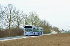 Auch der Flughafen-Bus 55 pendelt zwischen Messe und Aschheim (Frederik Buchleitner) Tags: bus munich münchen mercedes benz airport shuttle flughafen muc 55 messe omnibus shuttlebus bauma gelenkbus citaro flughafenbus messemünchen autobusoberbayern