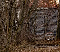 Backed Up With Nowhere To Go (Vicki Lund Photography) Tags: travel brown abandoned tourism architecture vintage landscapes woods junk artist raw fineart rustic gray barns maine newengland rusty naturallight tourists historic crusty vacationland eastcoast freelance countryroads redbarns androscoggin timberframe d90 daysgoneby maineartist maineusa barnsofmaine travelphotographer nikond90 androscoggincounty rusticbarns mainenewengland mainephotographer whitebarns fineartlandscape greenbarns yellowbarns newenglandbarns mainetrees graybarns colorsnatural mainebarns wwwvickilundphotographycom httponfbmevickilundphotographywelcome mainegov vickilund vickilundmaine vickilundbarns barnsusa northamericabarns