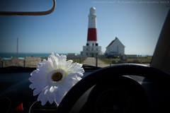 Journey's end (Avian Sky) Tags: lighthouse flower car vw portland beetle convertible dorset cabriolet portlandbill