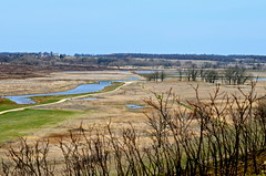 Simple early Spring views from Glacial Park- Ringwood- McHenry County IL (Meridith112) Tags: park river illinois spring oak nikon il wetlands prairies gravel kettles glacial ringwood kames savannas mchenrycounty glacialpark nikon70300 prairierestoration nikond7000 glacialgravelkameskettlesprairies oaksavannaswetlands