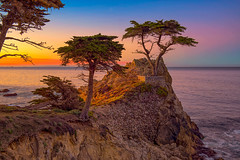 Lone Cypress Tree (mojo2u) Tags: california morning sunrise monterey pebblebeach lonecypress 17miledrive cypress nikon2470mm nikond800