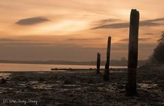 Shotley Sunset