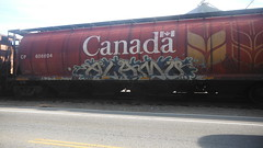 Alamo (Espestosis) Tags: canada bench graffiti panel graff cp alamo hopper freight fr8 wheatie benching bestcoastbench