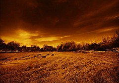 (Juan Rostworowski) Tags: colour art sepia vancouver landscape photography photo nikon foto juan wideangle filter fotografia nikkor musqueam rostworowski d800e