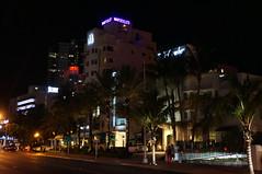 Miami 2013 (JasonCondie) Tags: friends restaurant hotel neon miami gator pastel alligator corona drinks everglades margarita artdeco miamibeach southbeach miamivice airboat lifeguardtower oceandrive gatorpark alligatorwrestling