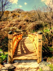 Cadgwith Bridge (Andy Brimble1) Tags: uk bridge blue trees sky sun holiday green grass sunshine clouds woods cornwall walk woodenbridge cadgwith nikoncoolpixp510