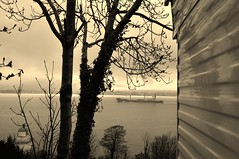 125/365 under sail (werewegian) Tags: lighthouse rain misty sepia river clyde ship sunday cargo container trailer caravan may13 day125 cloch 05may13 werewegian day125365 3652013 week19theme johnrickmers 365the2013edition