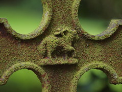 Grave Marker (Stephen Callaghan) Tags: ireland church grave ruins headstone olympus marker kildare whitechurch