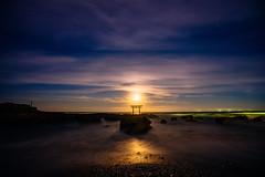 Rising Moon #2 (aotaro) Tags: moonrise torii  fe1635mmf4zaoss oaraikaigan  oaraiisosakijinja oarai moon   ilce7m2 risingmoon