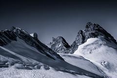 _DSC1797BN (Herbert West) Tags: montagna biancoenero
